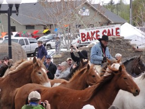 Horse Run in Three forks