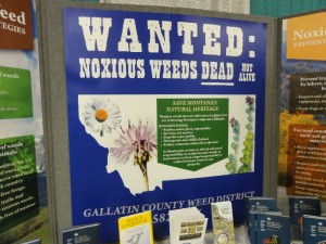 Wanted Weeds